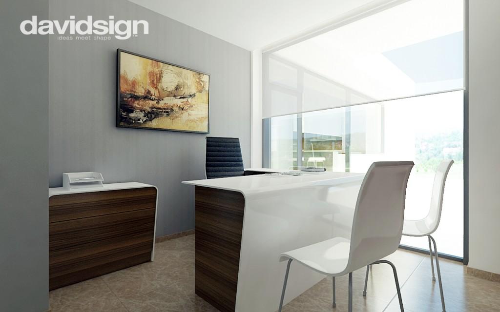 Design birou 2011