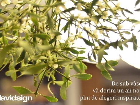 blog-1-img-341
